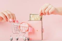 Dolary, prezenta pude?ko i menchia portfel z kart? kredytow? w kobiet r?kach na r??owym tle, zdjęcie royalty free