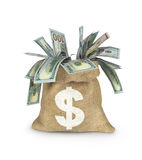 Dolary rachunków w torbie na bielu royalty ilustracja