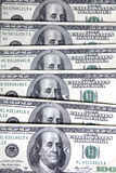 dolary setki Obraz Stock