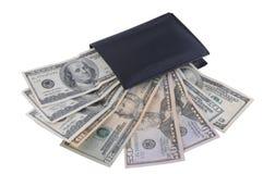dolary wśrodku portfla Fotografia Stock