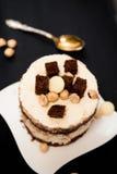 Dolce con bianco e cioccolato fondente Fotografia Stock Libera da Diritti