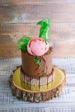 Dolce della crema del cioccolato con la peonia del cioccolato e la decorazione del isomalt Fotografia Stock Libera da Diritti