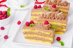Dolce della vaniglia con la crema ed i lamponi del cioccolato Fotografia Stock