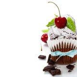 Dolce di cioccolato Immagini Stock