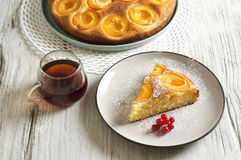 Dolce di miele con le albicocche, torta dell'albicocca Fotografie Stock Libere da Diritti