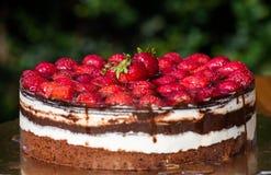 Dolce di moos delle fragole con il primo piano della frutta fresca fotografie stock libere da diritti