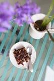 Dolce e fiore del brownie Immagine Stock Libera da Diritti