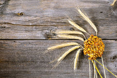 Dolce ed orecchie del cereale Fotografia Stock Libera da Diritti