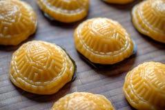 Dolce giallo Ang Koo della tartaruga Fotografia Stock