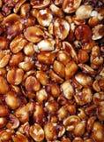 Dolce indiano dell'arachide - chikki fotografia stock