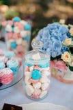 Dolci blu e rosa in un chiaro barattolo Fotografia Stock