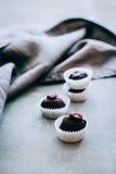 Dolci crudi utili del cioccolato Fotografia Stock Libera da Diritti