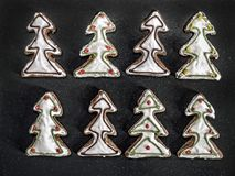 Dolci del pan di zenzero dell'albero di Natale Fotografie Stock