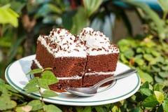 Dolci di cioccolato in giardino Fotografia Stock