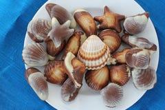 Dolci e seashells del cioccolato Immagini Stock