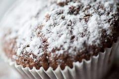 Dolci saporiti del muffin spruzzati con zucchero in polvere casalingo Fotografie Stock Libere da Diritti