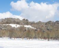 Dold backe för snö Fotografering för Bildbyråer