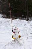 Dold brandpost för snö Royaltyfri Bild