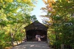 Dold bro, New England Royaltyfri Foto