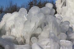 Dold buske för is arkivfoto