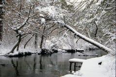 Dold fiskeplattform för snö Arkivfoto