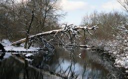 Dold fiskeplattform för snö Arkivbild
