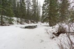 Dold flod för Snow fotografering för bildbyråer