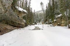 Dold flod för Snow royaltyfri foto