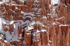 Dold klippa för snö i Bryce Canyon, Utah Royaltyfria Bilder