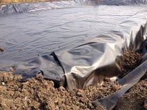 Dold lagun för Biogas Royaltyfria Foton