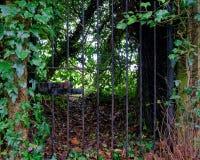 Dold smidesjärnport till en hemlig trädgård, Welwyn by, England arkivfoto