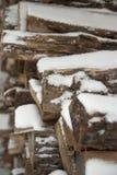 Dold vedtrave för snö Royaltyfri Fotografi