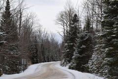 Dolda evergreen för snö på en lantlig väg arkivbilder