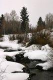Dolda flodstränder för snö nära Vail, Colorado royaltyfria foton