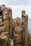 Doleryt kolumny, przylądka filar, Tasmania, Australia fotografia stock