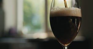 Dolewania lager ciemny piwo w szkło backlit zmierzchu światłem Obrazy Royalty Free