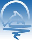 Dolfijn Stock Fotografie