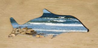 Dolfijn Ontworpen Mening van de Oceaan Stock Foto's