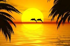 Dolfijnen vector illustratie