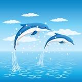 Dolfijnen. Stock Foto