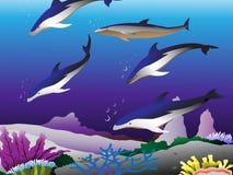 Dolfijnen in het overzees Stock Foto
