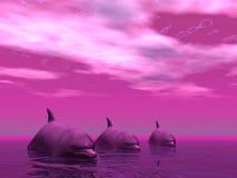 Dolfijnen onbeweeglijk stock illustratie