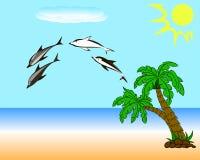 Dolfijnen op het strand Royalty-vrije Stock Foto's