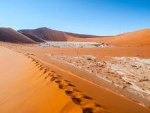 Dolina śmierć w namibijskim Sossusvlei obrazy stock