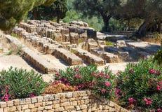 Dolina świątynie, Agrigento, Sicily, Włochy Obrazy Stock