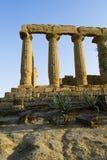 Dolina świątynie, Sicily Fotografia Royalty Free
