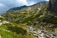 Dolina de Mlynicka, Vysoke Tatry (vale de Mlinicka, Tatras alto) - Eslováquia Imagem de Stock Royalty Free