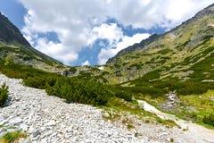 Dolina de Mlynicka, Vysoke Tatry (vale de Mlinicka, Tatras alto) - Eslováquia Fotografia de Stock Royalty Free