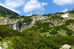 Dolina de Mlynicka, Vysoke Tatry (vale de Mlinicka, Tatras alto) - Eslováquia Imagens de Stock