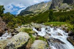 Dolina de Mlynicka, Vysoke Tatry (vale de Mlinicka, Tatras alto) - Eslováquia Fotografia de Stock